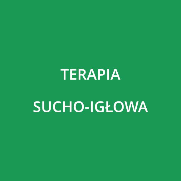 Terapia Sucho-igłowa